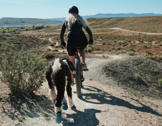 Woman Cycling outdoors with dog